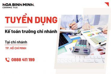 Tuyển dụng Kế toán trưởng chi nhánh làm việc tại chi nhánh Hồ Chí Minh